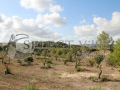 Wederverkoop - Plot - Moraira